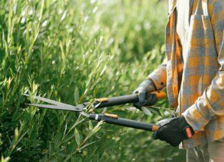 Outils pour le jardinage